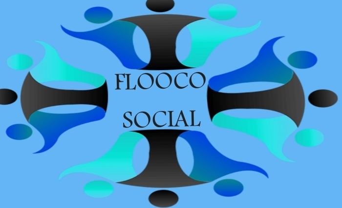 FLOOCOTIQUE ( PROGRAMMATION )